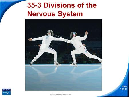 Slide 1 of 37 Copyright Pearson Prentice Hall 35-3 Divisions of the Nervous System.
