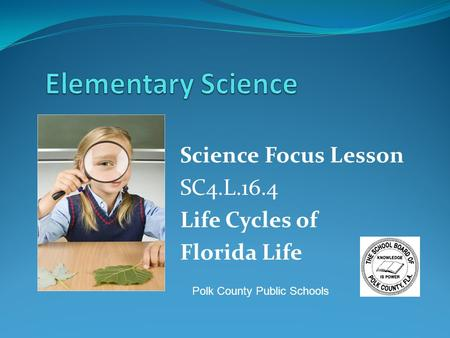 Science Focus Lesson SC4.L.16.4 Life Cycles of Florida Life Polk County Public Schools.