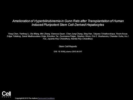 Amelioration of Hyperbilirubinemia in Gunn Rats after Transplantation of Human Induced Pluripotent Stem Cell-Derived Hepatocytes Yong Chen, Yanfeng Li,