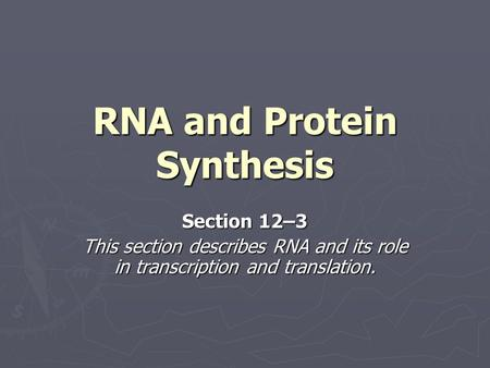 RNA and Protein Synthesis