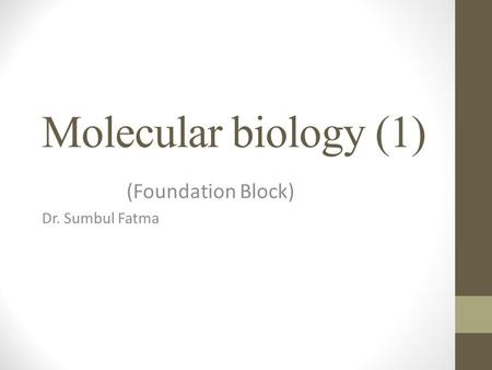 (Foundation Block) Dr. Sumbul Fatma