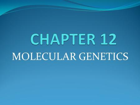 MOLECULAR GENETICS. Ch. 12.1 – DNA: The Genetic Material You will be doing this section in small groups. Each group will read Section 12.1. You will divide.