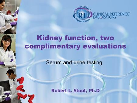 Kidney function, two complimentary evaluations Serum and urine testing Robert L. Stout, Ph.D.