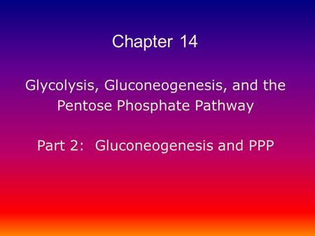 Glycolysis, Gluconeogenesis, and the Pentose Phosphate Pathway Part 2: Gluconeogenesis and PPP Chapter 14.