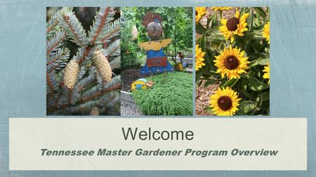 Welcome Tennessee Master Gardener Program Overview.