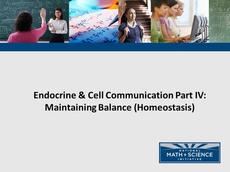 Endocrine & Cell Communication Part IV: