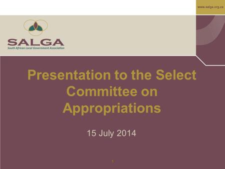 Www.salga.org.za 1 Presentation to the Select Committee on Appropriations 15 July 2014.