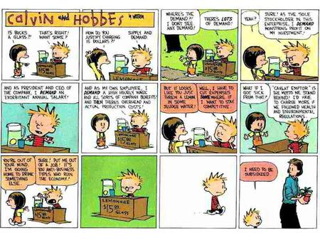 Calvin and Hobbes Questions