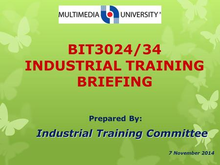 BIT3024/34 INDUSTRIAL TRAINING BRIEFING