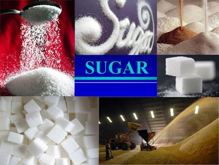SUGAR. We Need Sugar Sugars and starches supply energy to the body in the form of glucose Glucose = only energy source for red blood cells Glucose =