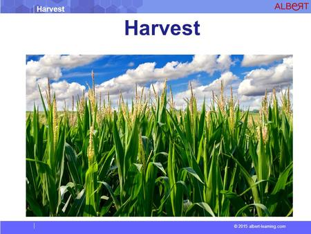 Harvest © 2015 albert-learning.com Harvest. © 2015 albert-learning.com Harvest Harvest is the process of gathering mature crops from the fields. Reaping.