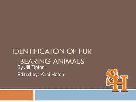 IDENTIFICATON OF FUR BEARING ANIMALS By Jill Tipton Edited by: Kaci Hatch.