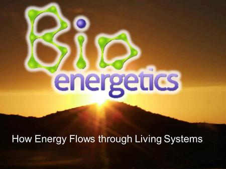 How Energy Flows through Living Systems