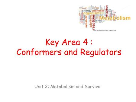 Key Area 4 : Conformers and Regulators