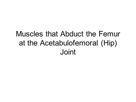 Muscles that Abduct the Femur at the Acetabulofemoral (Hip) Joint