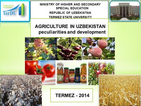 MINISTRY OF HIGHER AND SECONDARY SPECIAL EDUCATION REPUBLIC OF UZBEKISTAN TERMEZ STATE UNIVERSITY AGRICULTURE IN UZBEKISTAN peculiarities and development.