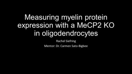 Measuring myelin protein expression with a MeCP2 KO in oligodendrocytes Rachel Siefring Mentor: Dr. Carmen Sato-Bigbee.