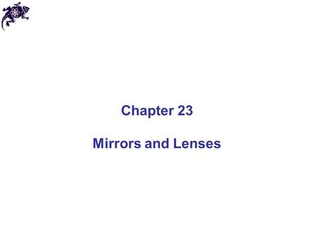 Chapter 23 Mirrors and Lenses. Mirrors and Lenses: Definitions The object distance (denoted by p) is the distance from the object to the mirror or lens.