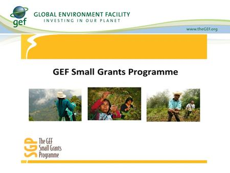 Agency Stakeholders Global Environmental Facility (GEF) United Nations Development Programme (UNDP) United Nations Office for Project Services (UNOPS)