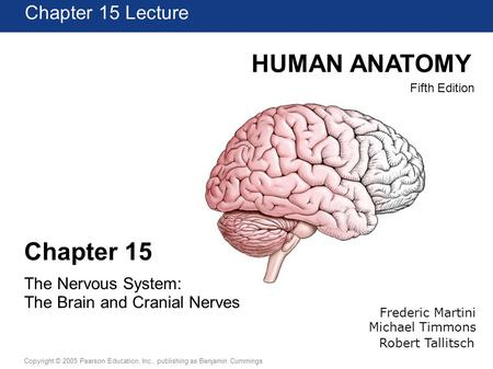 HUMAN ANATOMY Chapter 15 Chapter 15 Lecture The Nervous System: