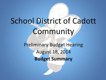 School District of Cadott Community Preliminary Budget Hearing August 18, 2014 Budget Summary.