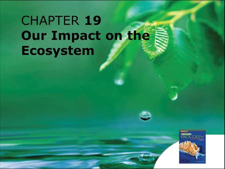 CHAPTER 19 Our Impact on the Ecosystem. 19.1How Do We Affect the Ecosystem? 19.2Conservation Chapter 19 Our Impact on the Ecosystem.