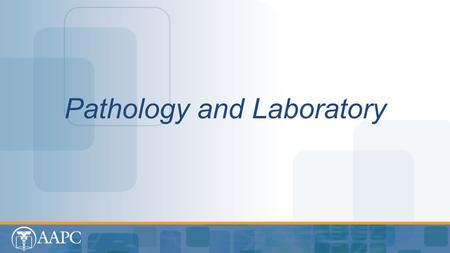 Pathology and Laboratory. CPT® copyright 2013 American Medical Association. All rights reserved. Fee schedules, relative value units, conversion factors.