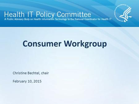 Draft – discussion only Consumer Workgroup Christine Bechtel, chair February 10, 2015.