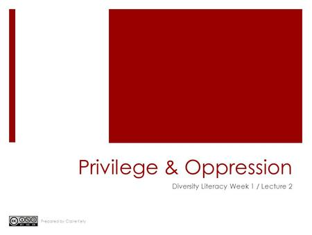 Privilege & Oppression Diversity Literacy Week 1 / Lecture 2 Prepared by Claire Kelly.