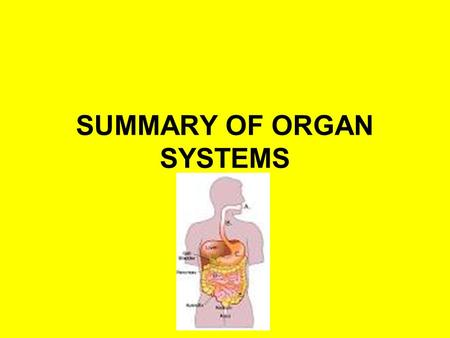 SUMMARY OF ORGAN SYSTEMS. Skeletal Major Organs: Bones Function: Provides structure; supports and protects internal organs Connections to other Systems:
