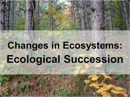 Changes in Ecosystems: . Ecological Succession