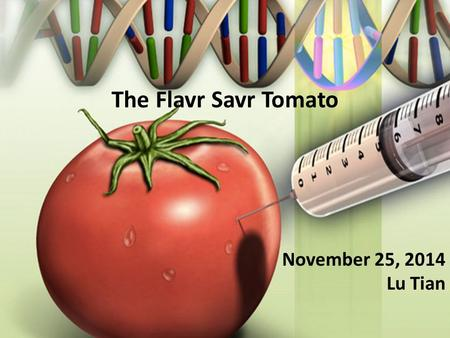 The Flavr Savr Tomato November 25, 2014 Lu Tian. Flavr Savr Tomato The first FDA approved genetically modified food Licensed in 1994 Ripening causes production.