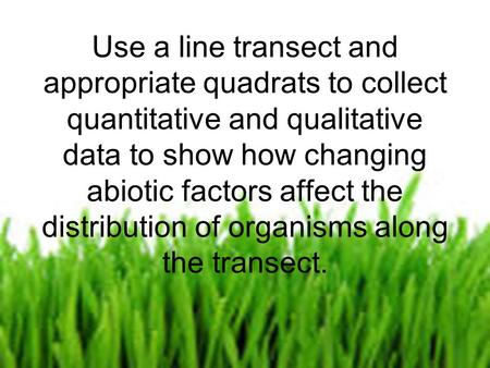By Charlotte Bagnall Use a line transect and appropriate quadrats to collect quantitative and qualitative data to show how changing abiotic factors affect.