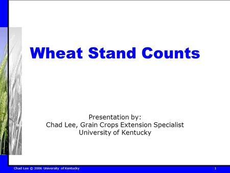 Chad Lee © 2006 University of Kentucky 1 Wheat Stand Counts Presentation by: Chad Lee, Grain Crops Extension Specialist University of Kentucky.