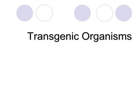 Transgenic Organisms. 3.3.2 Summarize how transgenic organisms are engineered to benefit society. Summarize how transgenic organisms are engineered to.