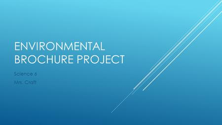 Environmental Brochure Project