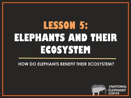 LESSON 5: ELEPHANTS AND THEIR ECOSYSTEM HOW DO ELEPHANTS BENEFIT THEIR ECOSYSTEM?