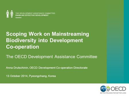 Scoping Work on Mainstreaming Biodiversity into Development Co-operation The OECD Development Assistance Committee Anna Drutschinin, OECD Development Co-operation.