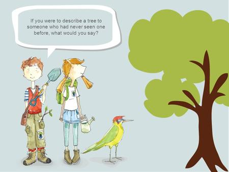 If you were to describe a tree to someone who had never seen one before, what would you say?