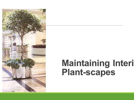 Maintaining Interior Plant-scapes. Next Generation Science/Common Core Standards Addressed! CCSS.ELA Literacy Follow precisely a complex multistep procedure.