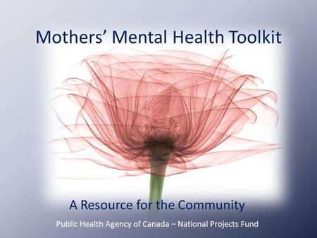 Mothers' Mental Health Toolkit