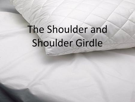 The Shoulder and Shoulder Girdle. PAINFUL SHOULDER SYNDROMES, IMPINGEMENT SYNDROMES: NONOPERATIVE MANAGEMENT Ghurki Trust Teaching Hospital.