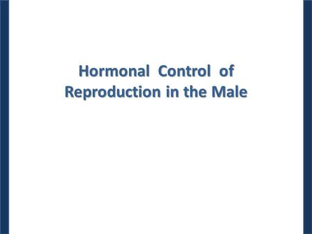Hormonal Control of Reproduction in the Male. Dr. M. Alzaharna (2014) Spermatogenesis Spermatogenesis goes on continuously from puberty to senescence.