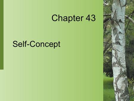 Chapter 43 Self-Concept. 43-2 Copyright 2004 by Delmar Learning, a division of Thomson Learning, Inc. Self-Concept  Self-concept is an individual's perception.