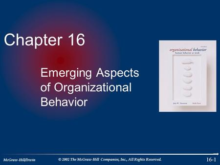 McGraw-Hill/Irwin © 2002 The McGraw-Hill Companies, Inc., All Rights Reserved. 16-1 Chapter 16 Emerging Aspects of Organizational Behavior.