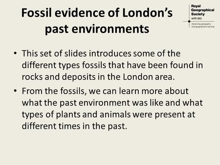 Fossil evidence of London's past environments This set of slides introduces some of the different types fossils that have been found in rocks and deposits.
