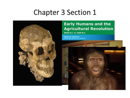 Chapter 3 Section 1. Where did the human story begin? Lucy's remains were found in East Africa… Lucy's remains were found in East Africa…