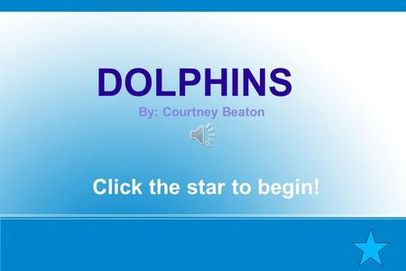 DOLPHINS By: Courtney Beaton Click the star to begin!