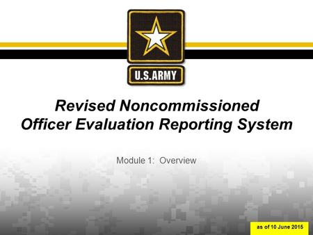 Revised Noncommissioned Officer Evaluation Reporting System