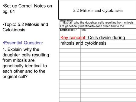 4.2 Overview of Photosynthesis Set up Cornell Notes on pg. 61 Topic: 5.2 Mitosis and Cytokinesis Essential Question: 1. Explain why the daughter cells.